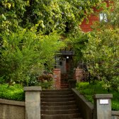 berkeley_hills_house_in_the_trees